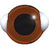 Special Offer  .  Medium Topaz Bear eyes with white corners
