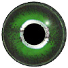 Green and Silver Reptile eyes. A concave/convex multicoloured reptile eye with a round pupil.