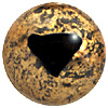 Speckled Gold Lizard Eye with triangular pupil. Eyes designed for amphibians.