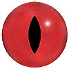 Red Viper Snake Eyes with a split pupil. Eyes designed for amphibians.
