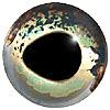 Aspheric Fish Eyes Code 160AF