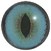 Blue Cat Eye. A premium grade Fox/Cat eye with a slit pupil. An excelllent exhibition quality eye.