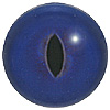 Dark Blue Cat Eye. A premium grade Fox/Cat eye with a slit pupil. An excelllent exhibition quality eye.