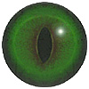 Emerald Green Cat Eye. A premium grade Fox/Cat eye with a slit pupil. An excelllent exhibition quality eye.