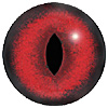 Red Cat Eye. A premium grade Fox/Cat eye with a slit pupil. An excelllent exhibition quality eye.