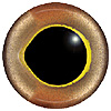 Gold Fish Eye. European style multicolour fish eyes on wire made by hand from crystal glass and painted and fired for a permanent finish.
