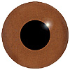 Brown Glass Bird Eyes. A single colour iris with a black pupil on wire. Ideal for stickmaking and Decoy carving.