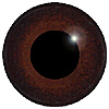 Red Brown/Brown Multicoloured Bird Eyes. This glass eye on wire has a multi-colour iris with a black pupil. Ideal for stickmaking and Decoy carving.
