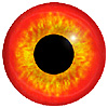 Red/Gold Bird Eyes. This glass eye on wire has a multi-colour iris with a black pupil. Ideal for stickmaking and Decoy carving.