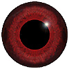 Red Mix Bird Eyes. This glass eye on wire has a multi-colour iris with a black pupil. Ideal for stickmaking and Decoy carving.
