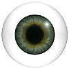 Human or Doll eyes. A great mannequin eye that can double as a human eye if required. The eye is quite fragile but can be back filled for stability.