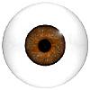 Human Eyes Code 900HF and 900HFA