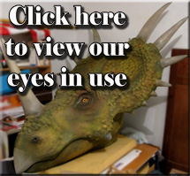 View our gallery of glass eyes